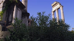 Temple of Castor and Pollux in the Forum in Rome, Italy 4K Stock Video Footage Stock Footage