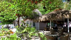St. Lucia Caribbean Sea 131 huts between exotic trees at Piton Bay beach Stock Footage
