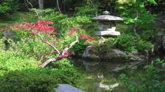 Relections In Pond Of Japanese Garden 02 Stock Footage