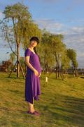 Pregnant woman standing in the park at sunset - stock photo