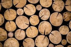 Photo of natural wood Stock Photos