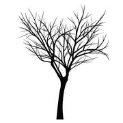 Trees with dead branch - stock illustration