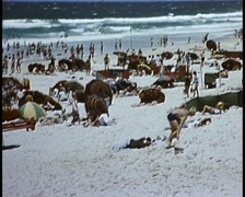 1950s Australian Beach Scene Stock Footage