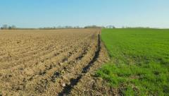 Plowed and green field in spring Stock Footage