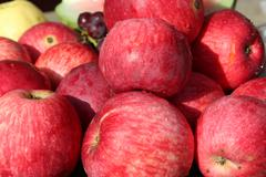 ripe red apples - stock photo