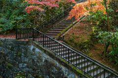 Stock Photo of Colorful Autumn Leaf Season in Japan