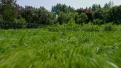 The span of the camera low over grass. Sunny summer day in the city park. - stock footage