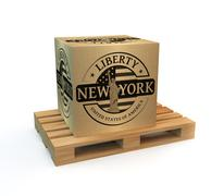Rubber stamp with Statue of Liberty Piirros