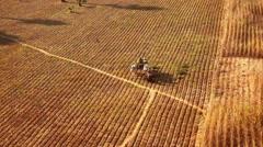 Unidentified Burmese farmers work at rice field. Rural landscape in Myanmar - stock footage
