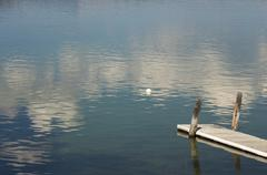 Tranquil Morning Lake Scene with Beautiful Reflection - stock photo