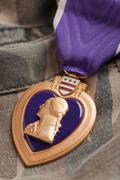 Purple Heart War Medal on Camouflage Material Stock Photos