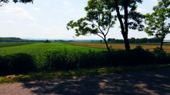 Driving A Car On A Country Road Backround - stock footage