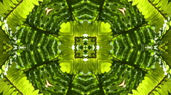 Nature Kaleidoscope Video Loop - Nature Kaleido 08 HD - stock footage