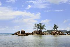 Beautiful beach Anse Boudin - stock photo