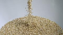 White Quinoa Seeds Falling Super Slow Motion Stock Footage
