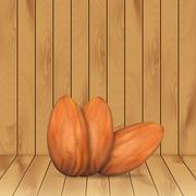 Almonds - stock illustration