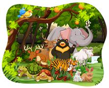 Wildlife - stock illustration