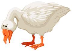 Goose - stock illustration