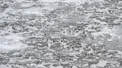 Pieces, blocks and floes of melting ice float on water surface Stock Footage