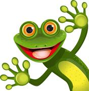 Stock Illustration of merry green frog