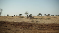 Village cart carriage pulled by cows in India, long shot, shallow DOF Stock Footage