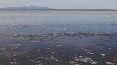 Alaska Sea Ice 3 Stock Footage