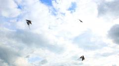 Sport kites soar in the sky. - stock footage