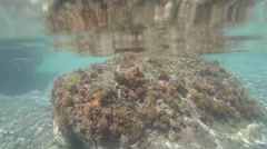 St. Lucia Caribbean Sea 178 overgrown underwater rock and come to surface Stock Footage