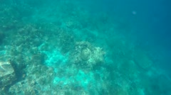 St. Lucia Caribbean Sea 176 amazing sunlight reflections under water Stock Footage