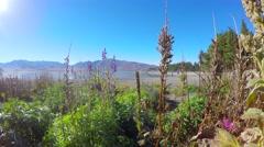 Beautiful Autumn Morning At Lake Tekapo Stock Footage