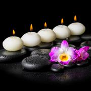 Spa concept of orchid flower and row white candles on black zen stones backgr Stock Photos