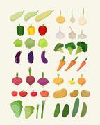 Set of fresh vegetables. Vector illustration Isolated carrot and garlic Stock Illustration