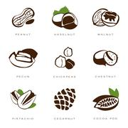 Nuts, Beans and Seed Vector Stock Illustration