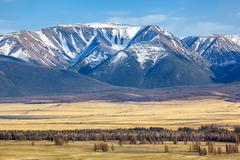 Altai mountains in Kurai area with North Chuisky Ridge on background Stock Photos