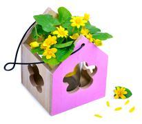 Stock Photo of Wild dandelions in the decorative wooden vase