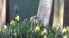 The cycle of life and death human graveyard in Spring Stock Footage