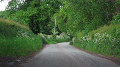 English country lane springtime lush green hedgerow and trees 5 Stock Footage