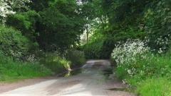 English country lane springtime lush green hedgerow and trees 4 - stock footage