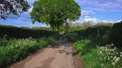 English country lane lush green hedgerow and trees 1 Stock Footage