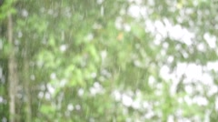 Heavy rain with out focus background Stock Footage