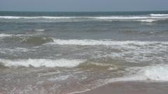 Seashore, East coast Stock Footage
