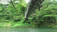 Stock Video Footage of Below Small Bridge Over The Tama River In Forest