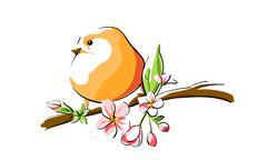Orange bird Stock Illustration