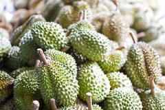 Durian nature fruit in southeast asia - stock photo