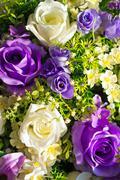 An artificial flowers rose in soft light . Stock Photos