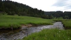 River in the mountain Stock Footage