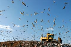 Landfill Working - stock photo