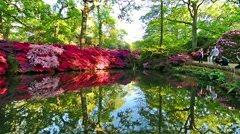 London, United Kingdom. May 2015. People walking in Isabella Plantation. Pond Stock Footage