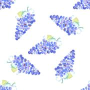 Watercolor grape with leaves in vintage style Stock Illustration