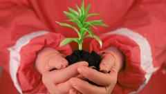 Man in red protective suit holding soil and a green young plant in hands Stock Footage